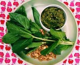 Easy Nut-Free Thermomix Pesto Recipe